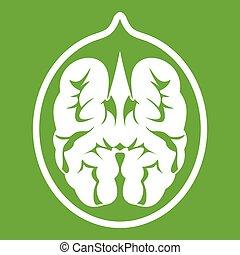 Walnut icon green