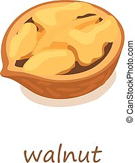 Walnut icon, isometric 3d style