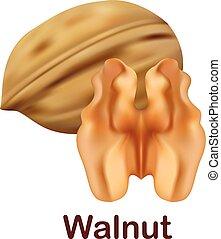 Walnut icon, realistic style - Walnut icon. Realistic...
