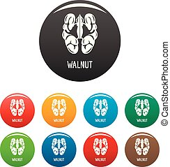 Walnut icons set color