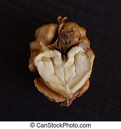 walnut in a heart isolated