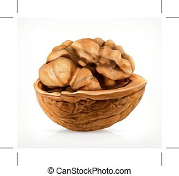 Walnut in shell icon - Walnut in shell, vector icon isolated...