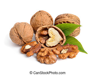 Walnut isolated in white background.