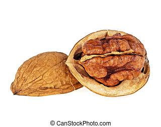Walnut isolated on white background, close up