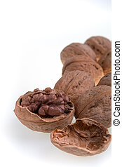 Walnut on a white background. Isolated. Dried nuts. Close up.