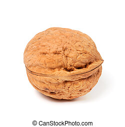 Walnut on white background. Close-up view.