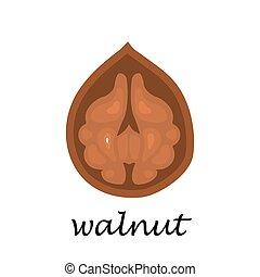 Walnut on white background in cartoon style.