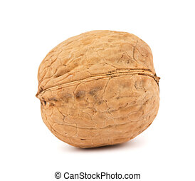 walnut on white background