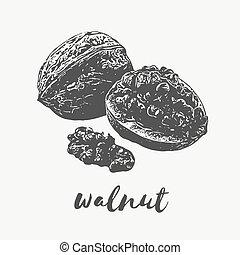 walnut Organic Food