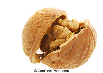 Walnut shattered - Walnut. It is isolated on the white...