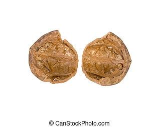 walnut shell isolated on white background