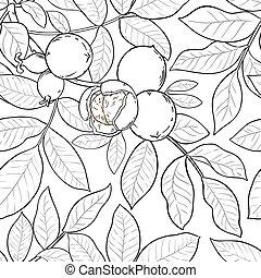 walnut vector pattern on white background