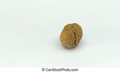 Walnut. Walnut kernel. Nut isolated on white. With clipping...