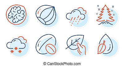 Walnut, Water drop and Christmas tree icons set. Snow weather, Organic tested and Soy nut signs. Vector