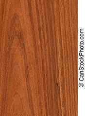 Walnut (wood texture)
