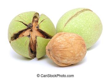 Walnuts, fresh crude, green on white background.