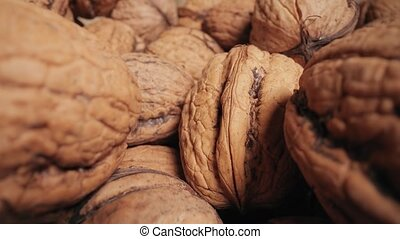 Walnuts in a pile macro probe lens camera motion