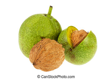 Ripe walnuts in green husk isolated over white background