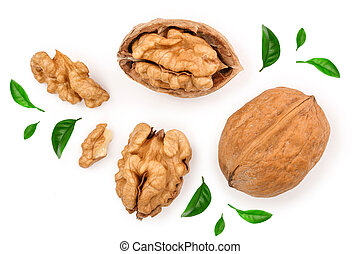 Walnuts isolated on white background. Top view. Flat lay