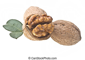 Walnuts with leaf on a white background.