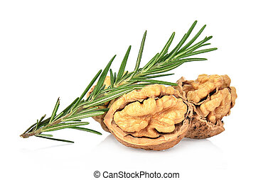 Walnuts with rosemary isolated on white background