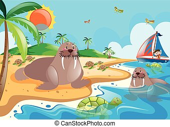 Walrus and turtle in the ocean