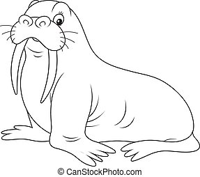 Walrus - Black and white vector illustration of a big walrus...