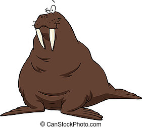 Walrus on a white background vector illustration