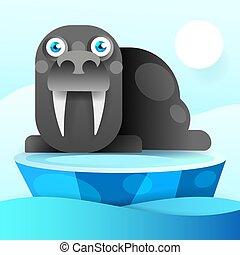 Walrus Rests  Antarctic Continent