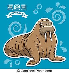 Walrus - Vector illustration of a walrus