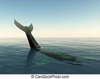 walvisstaart