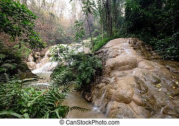 wan, cantó, cascada, pha, sri, chiangmai, parque, dang, tailandia, nacional