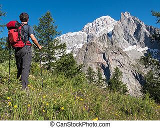 wandelaar, berg landschap, bewonderen