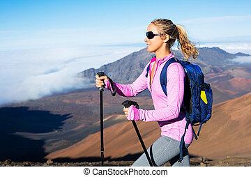 wandelaar, bergen