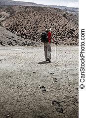 wandelende, bergbeklimmer, himalayas, trekker