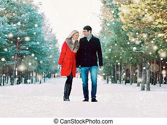wandelende, goed, winter, besneeuwd, paar, park, jonge, samen, terwijl, weer, lachen, plezier, het genieten van, hebben