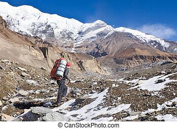 wandelende, in, himalaya, bergen