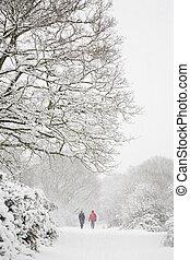 wandelende, in, winter