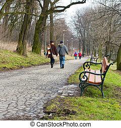 wandelende, park, paar, bos