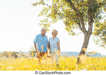 wandelende, romantisch paar, samen, akker, terwijl, holdingshanden, senior