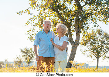 wandelende, romantische, platteland, paar, samen, terwijl, holdingshanden, senior