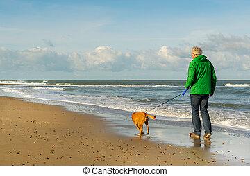wandelende, strand, dog, man