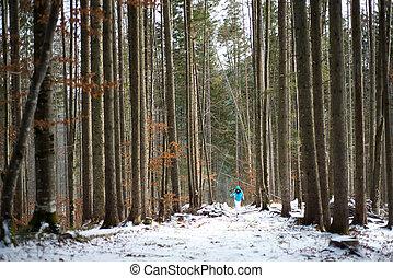wandelende, vrouw, levensstijl, winter bomen, hoog, tussen, bergen.