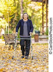 wandelende, vrouw, park, herfst, buitenshuis, walker, senior