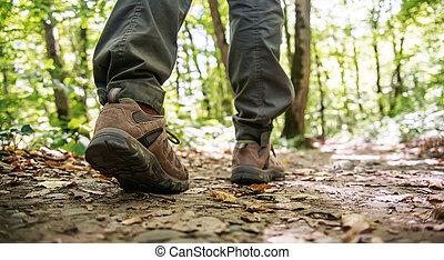 wandelende, vrouwlijk, herfst, footpath, forest., benen
