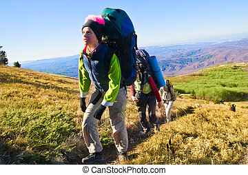 wanderer, hochklettern, der, berg