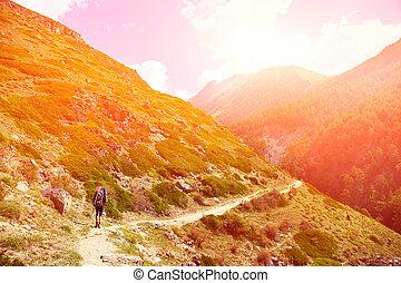 wanderer, in, der, berg