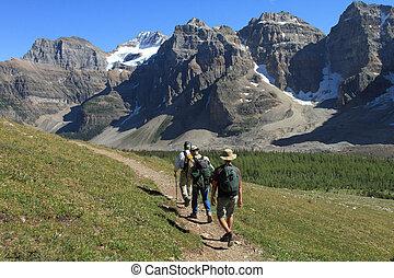 wanderer, in, der, kanadische rockies