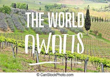 The world awaits - wanderlust adventure motivational poster sign.