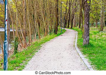 wanderpfad, in, a, klein, park, neben, a, fluß